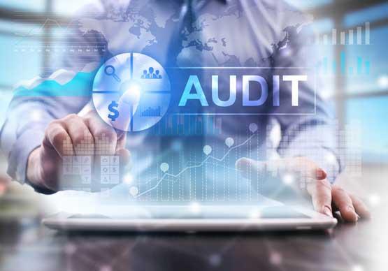 Centre d'expertise bluemega audit et conseils